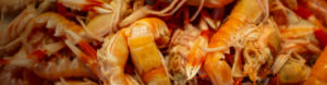 Saltwater Seafood Contact Header