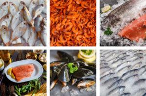 Saltwater Seafood Fresh Seafood Image Grid