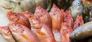 Saltwater Seafood Seafood Market