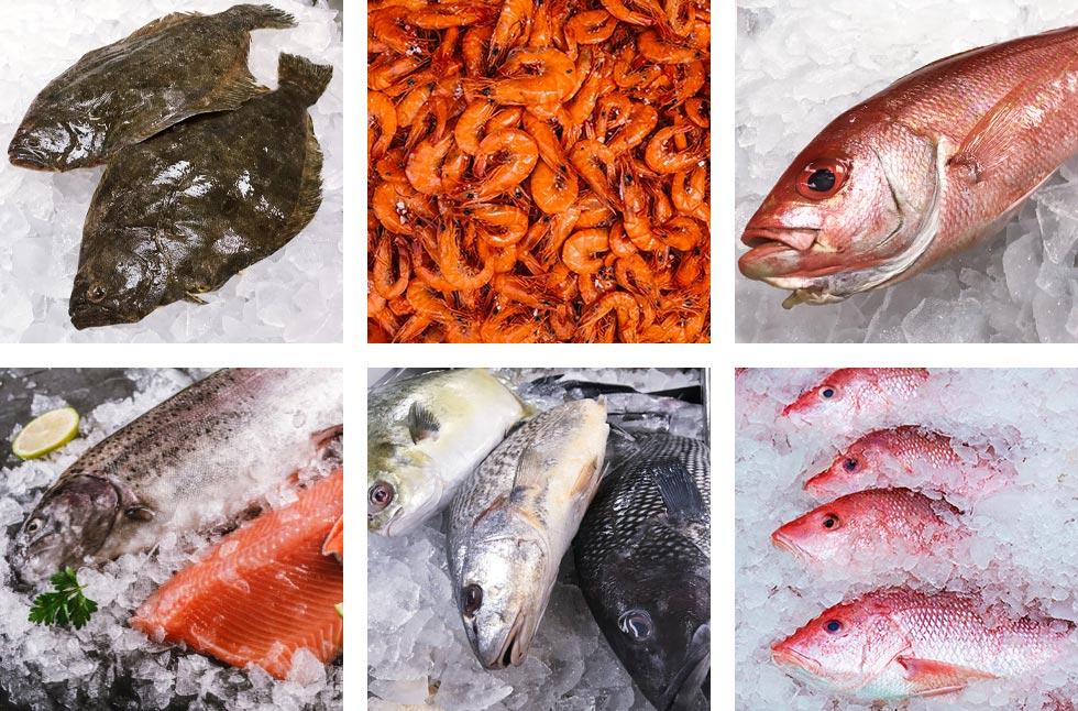 Saltwater Seafood Fresh Seafood Grid